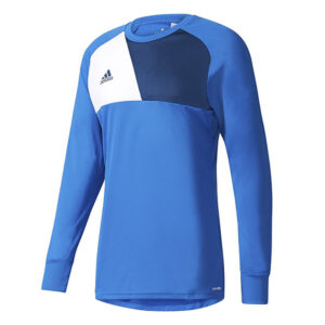 Assita Goalkeeper Jersey Longsleeve Junior